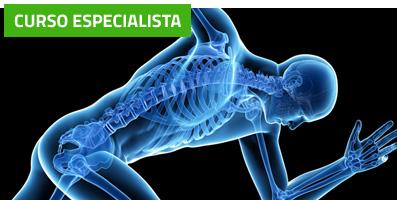 Curso Experto en Acupuntura y Estimulación Neuro-Refleja®: Patologías Músculo-Esqueléticas