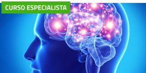 Curso de Estimulación Neuro-Refleja y Acupuntura (60 horas)